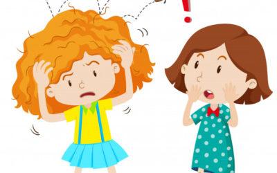 8 myter om lus, som du skal aflive